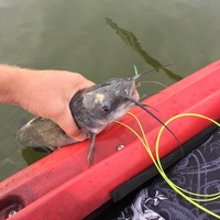 Tradinghouse Creek Reservoir Fishing Report 09/14/2016
