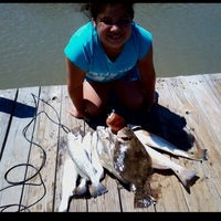Lake Austin (Bay City) Fishing Report 11/02/2013