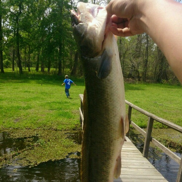 The Preserve of Texas Fishing Report 04/01/2014