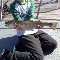 Other Freshwater Fishing Report 06/20/2014