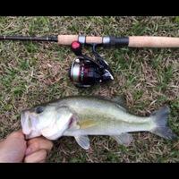 Harvey Lake Fishing Report 04/21/2014