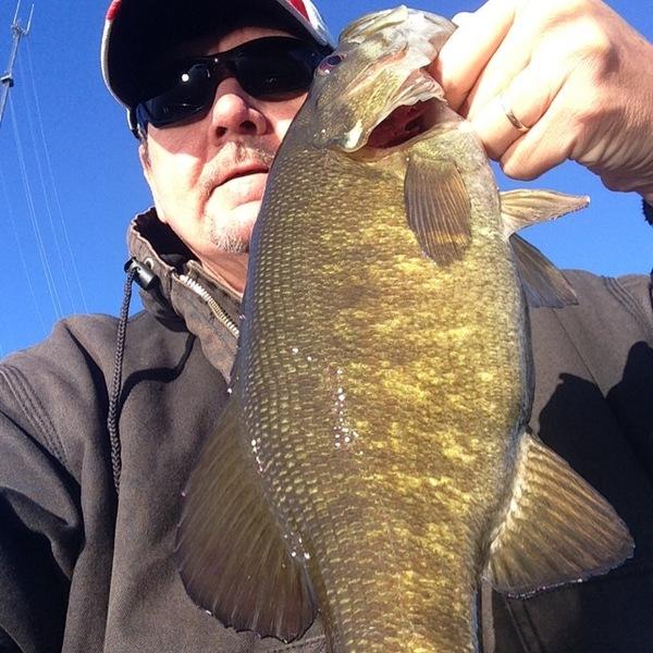 Smallmouth bass sacramento san joaquin river delta ca for California delta fishing report