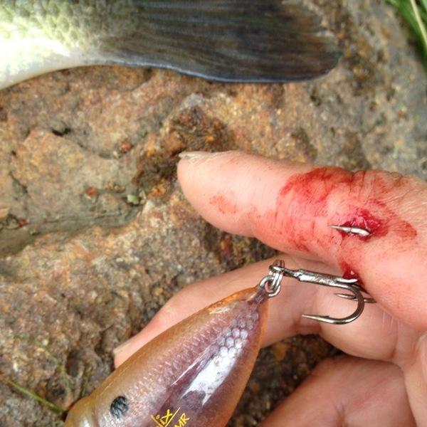 Lake Oroville Coho Fishing Report