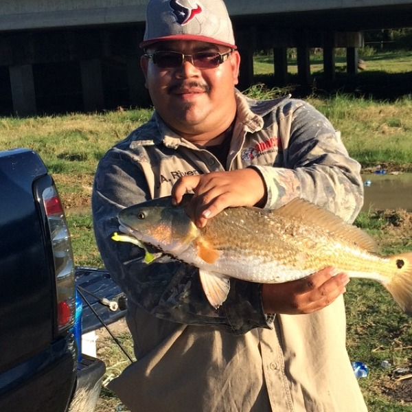 Old River Fishing Report 10/06/2014