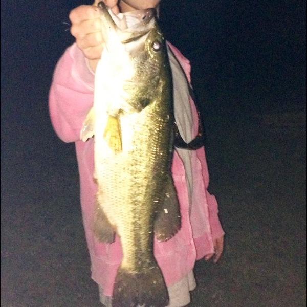 Allen Ponds Fishing Report 10/23/2013