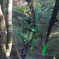 Gaston County Hunting Report 09/09/2017