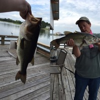 Other Freshwater Fishing Report 07/25/2017