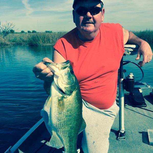 Largemouth bass sacramento san joaquin river delta ca for California delta fishing report