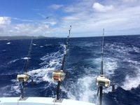 Offshore Fishing Report 08/11/2016