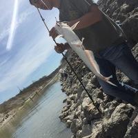 Soil Cons. Site 7 Reservoir Fishing Report 03/09/2016
