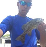 Kalamazoo River Fishing Report 08/16/2017