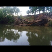 San Antonio River (Brackenridge Park) Fishing Report 05/21/2014