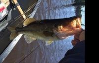 Lake Naconiche Fishing Report 05/05/2016