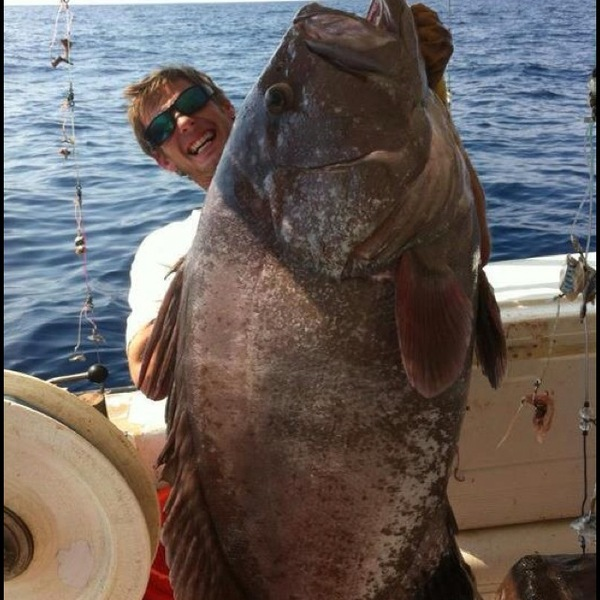 Offshore Fishing Report 08/01/2012