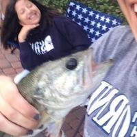 Cypress Ponds Fishing Report 04/24/2017