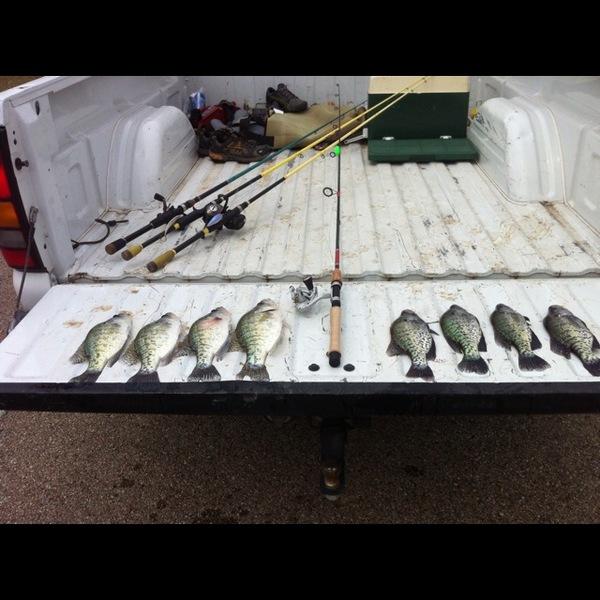White crappie lake waco tx fishingscout for Lake waco fishing report