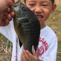 Marine Creek Lake Fishing Report 09/09/2015