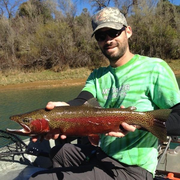 Keswick reservoir fishing reports fishingscout mobile app for Lake silverwood fishing report