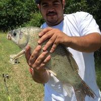 Dallas Ponds Fishing Report 07/01/2017