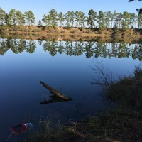 Kingwood Ponds Fishing Report 11/14/2016