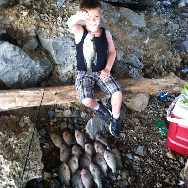 Black crappie lake guntersville al fishingscout for Lake guntersville fishing hot spots