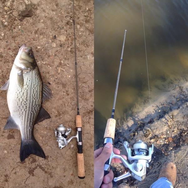 Somerville Lake Fishing Report 02/12/2016