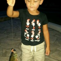 San Antonio River (Brackenridge Park) Fishing Report 09/22/2014