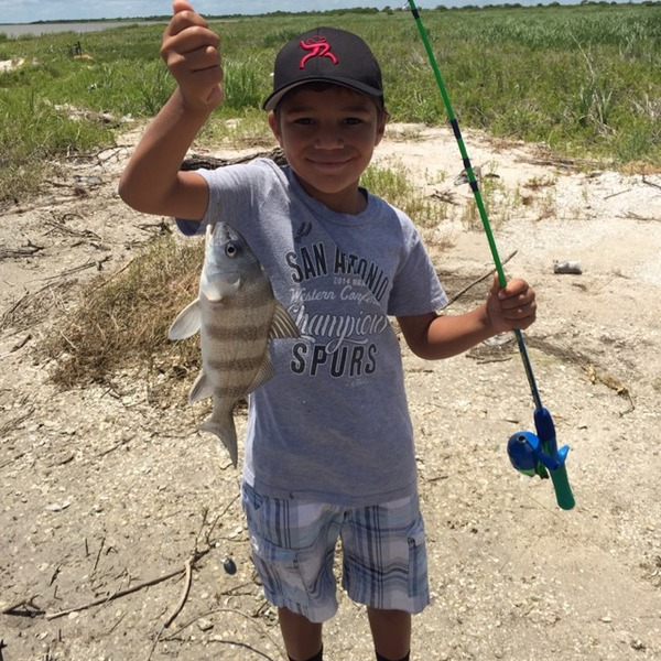 Mission Bay Fishing Report 06/07/2015