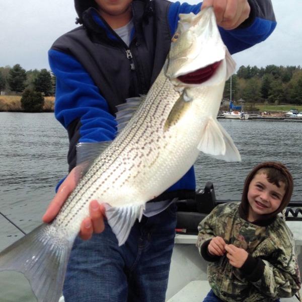 Claytor lake fishing reports fishingscout mobile app for Va fishing report
