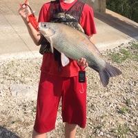 Lake Lavon Fishing Report 04/17/2016