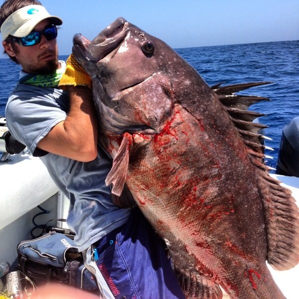 Port Fourchon Fishing Report 05/22/2013