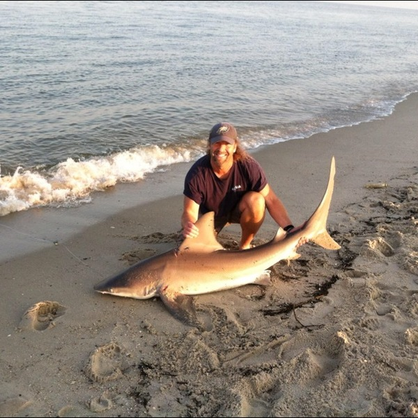 Sandbar shark delaware bay de nj fishingscout for Delaware bay fishing report