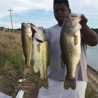 Martin Creek Lake Fishing Report 06/09/2016