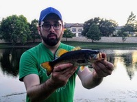 Round Rock Ponds Fishing Report 06/27/2017