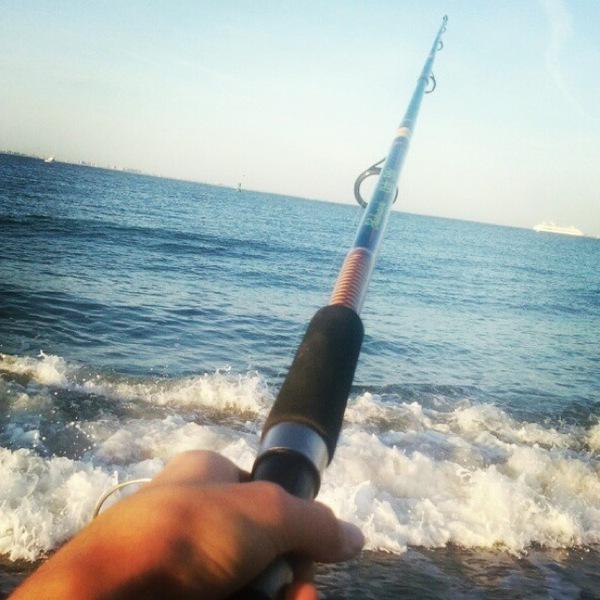 Blue fish sandy hook bay nj fishingscout for Sandy hook fishing report