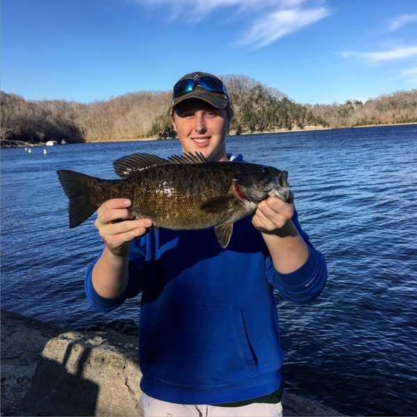 Fishingscout mobile app kentucky fishing reports for Taylorsville lake fishing report