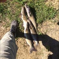 Lake Quitman Fishing Report 05/10/2014
