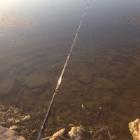 Loy Lake Fishing Report 04/22/2014
