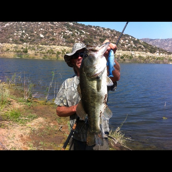 dixon lake fishing 29897 trendnet