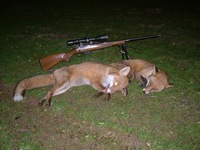 Other County Hunting Report 06/24/2016
