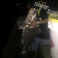 Lake Anahuac Fishing Report 09/30/2015