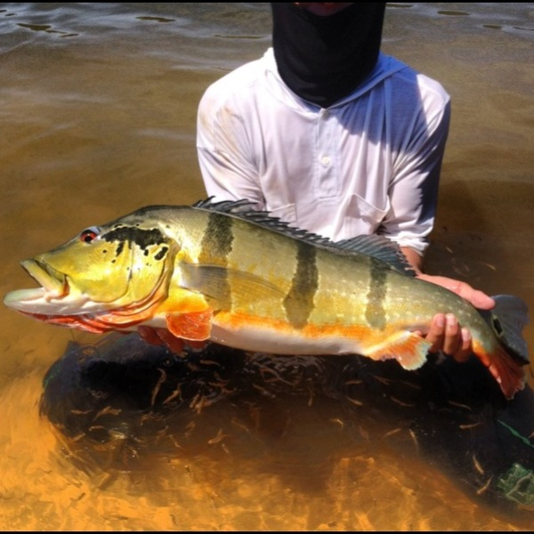 Other Freshwater Fishing Report 02/27/2014