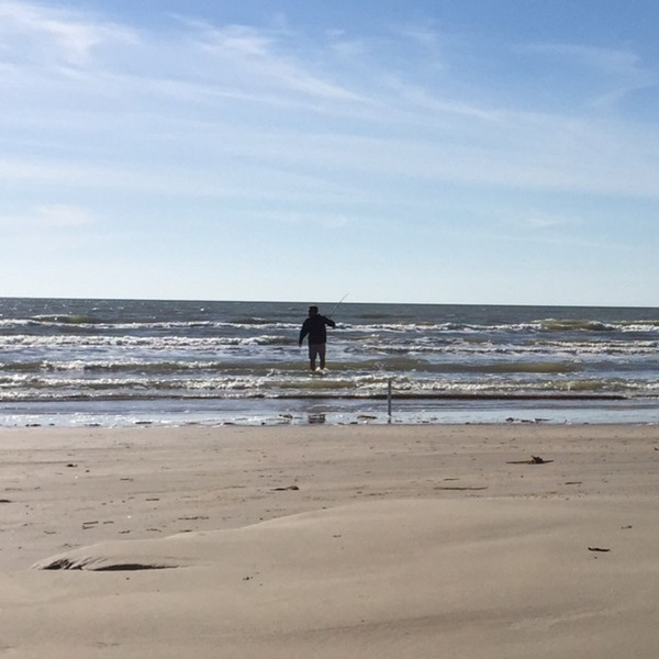 Whiting freeport surfside tx fishingscout for Surfside fishing report