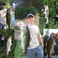 Highland Park Ponds Fishing Report 06/09/2016