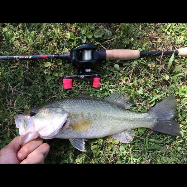 West Mud Creek Lake Fishing Report 05/02/2014
