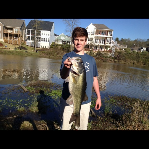savannah river fishing reports fishingscout mobile app