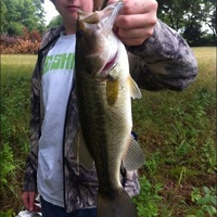 Decatur Ponds Fishing Report 06/08/2012