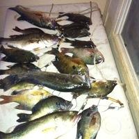 South Lake Fishing Report 05/07/2014