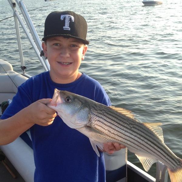 Striped bass lake texoma tx ok fishingscout for Lake texoma fishing report