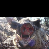 Other County Hunting Report 01/10/2013